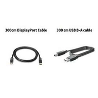 HP Inc  300CM DP USB BA CABLES